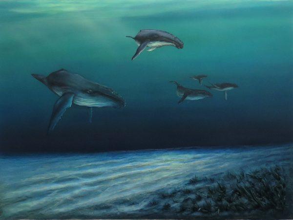Humpbacks In The Paddock Petra Meikle De Vlas