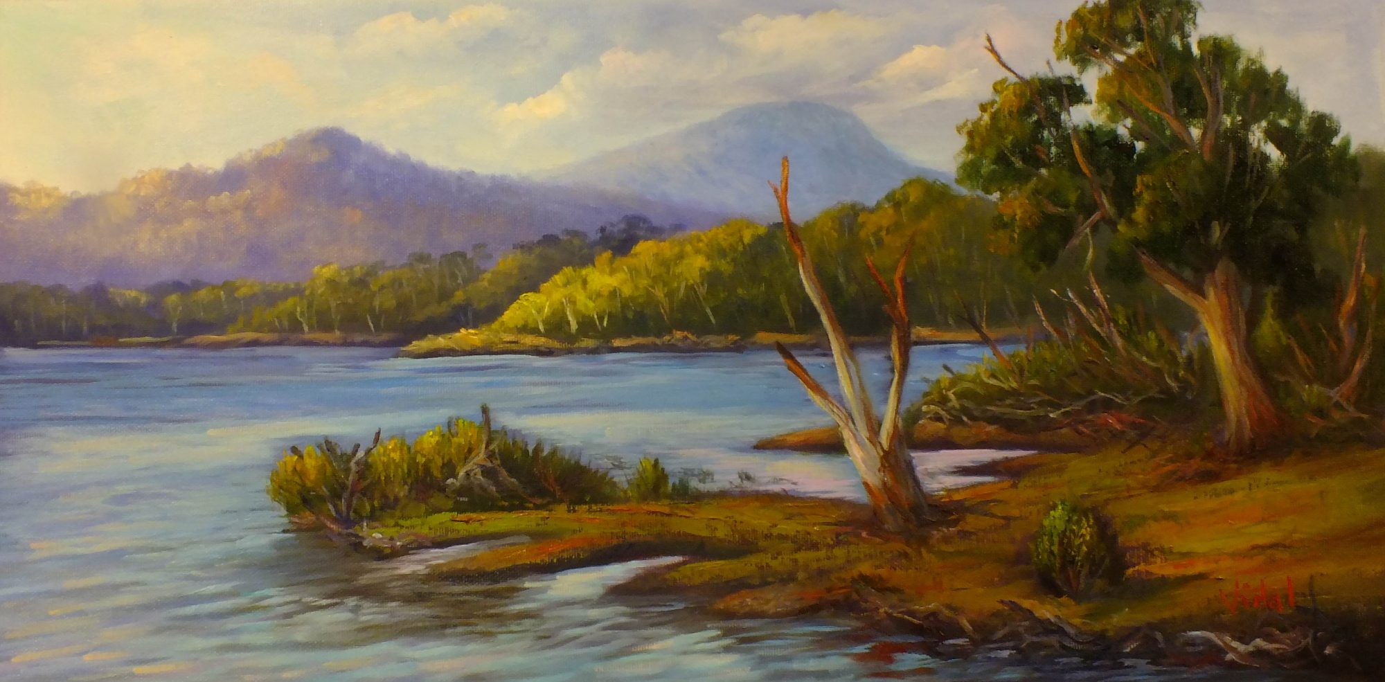 Lake St Clair Tasmania Oil On Canvas Landscape Painting By C Vidal