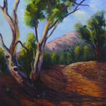 On the road Flinders Ranges South Australia