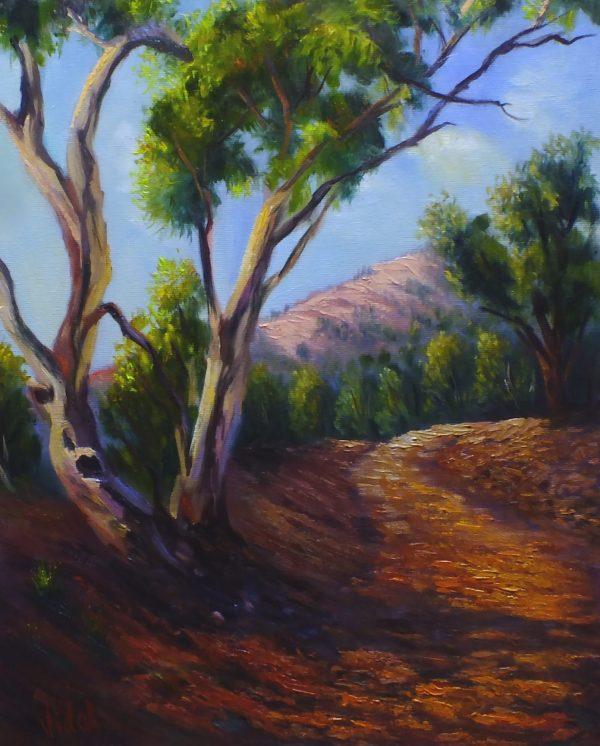 Leading The Way Flinders Ranges Oil On Canvas Cvidal V2