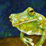Being Green – Tree Frog