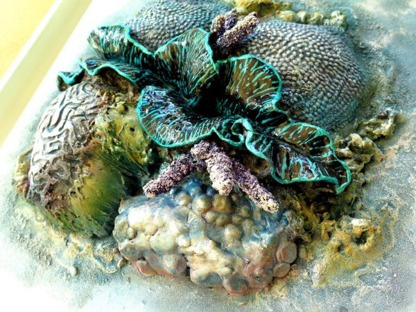 Oyster Reef Clam Petra Meikle De Vlas