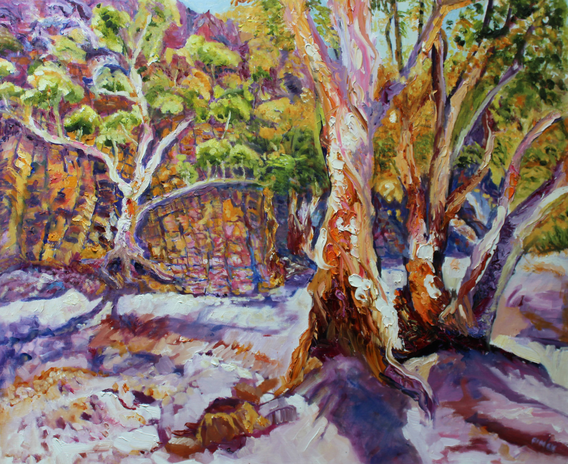 Flinders Ranges Gum Trees Final