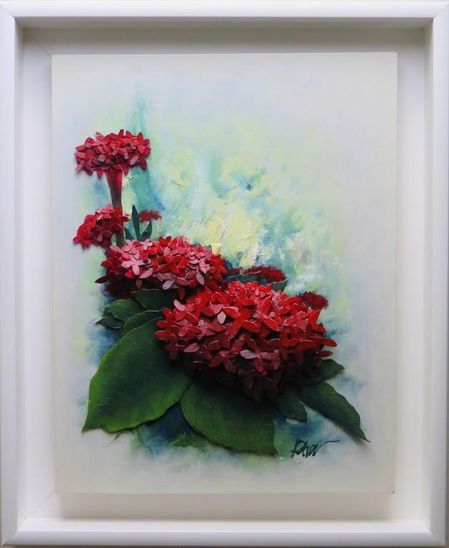 Blooming Red Ixora Petra Meikle De Vlas