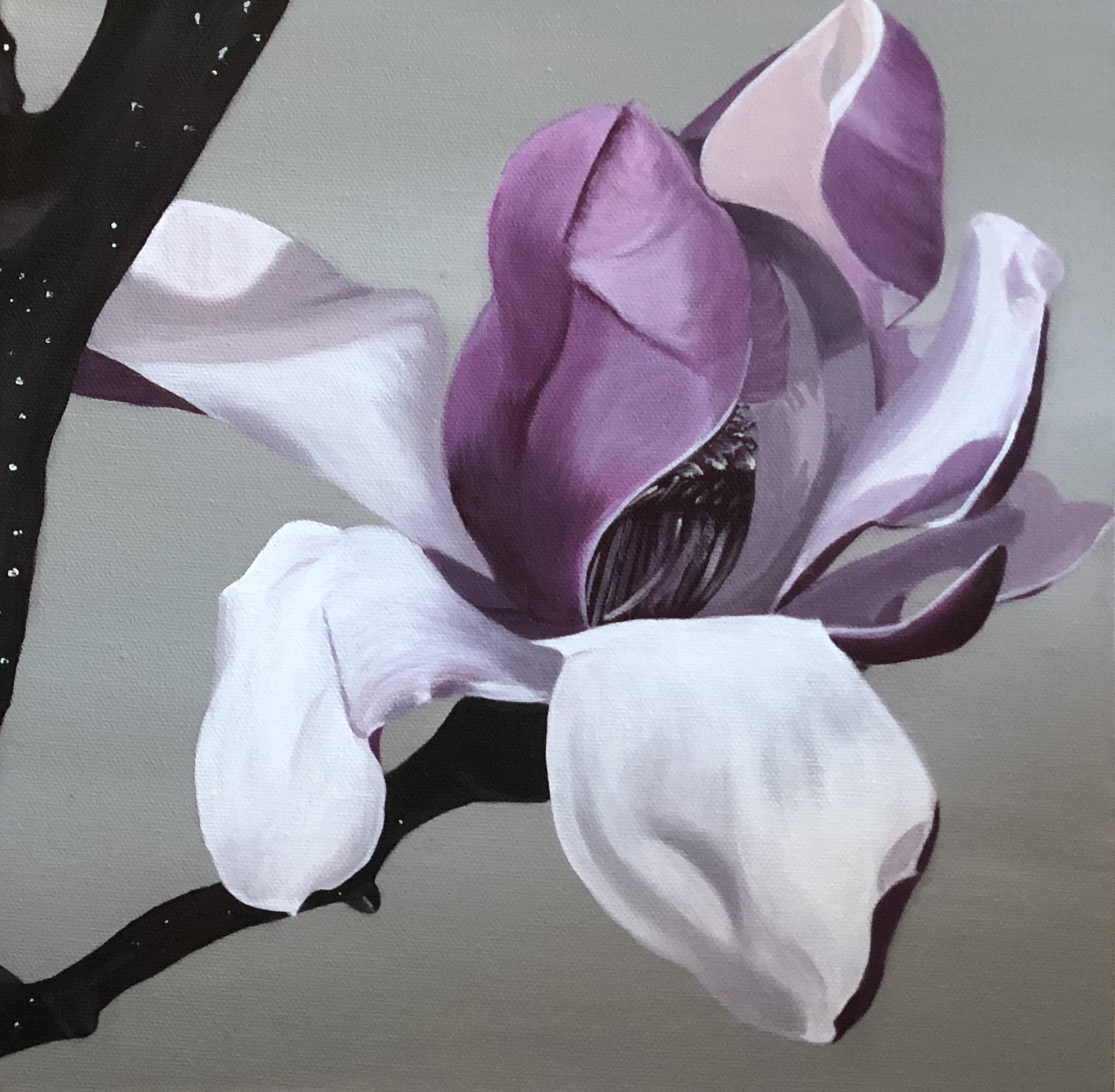 Magnolia #1