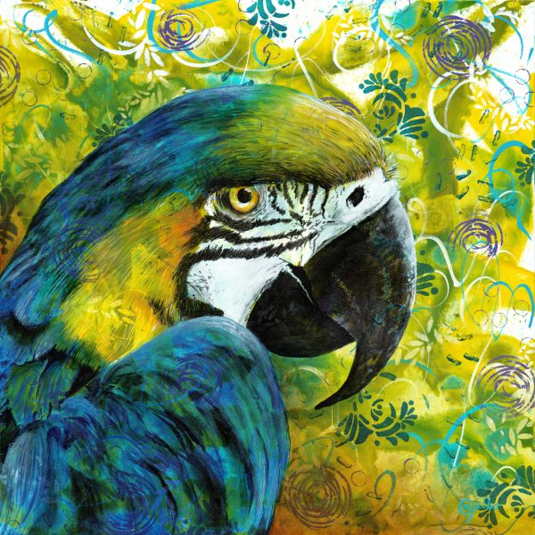 Michelle Gilks Macaw Coaster