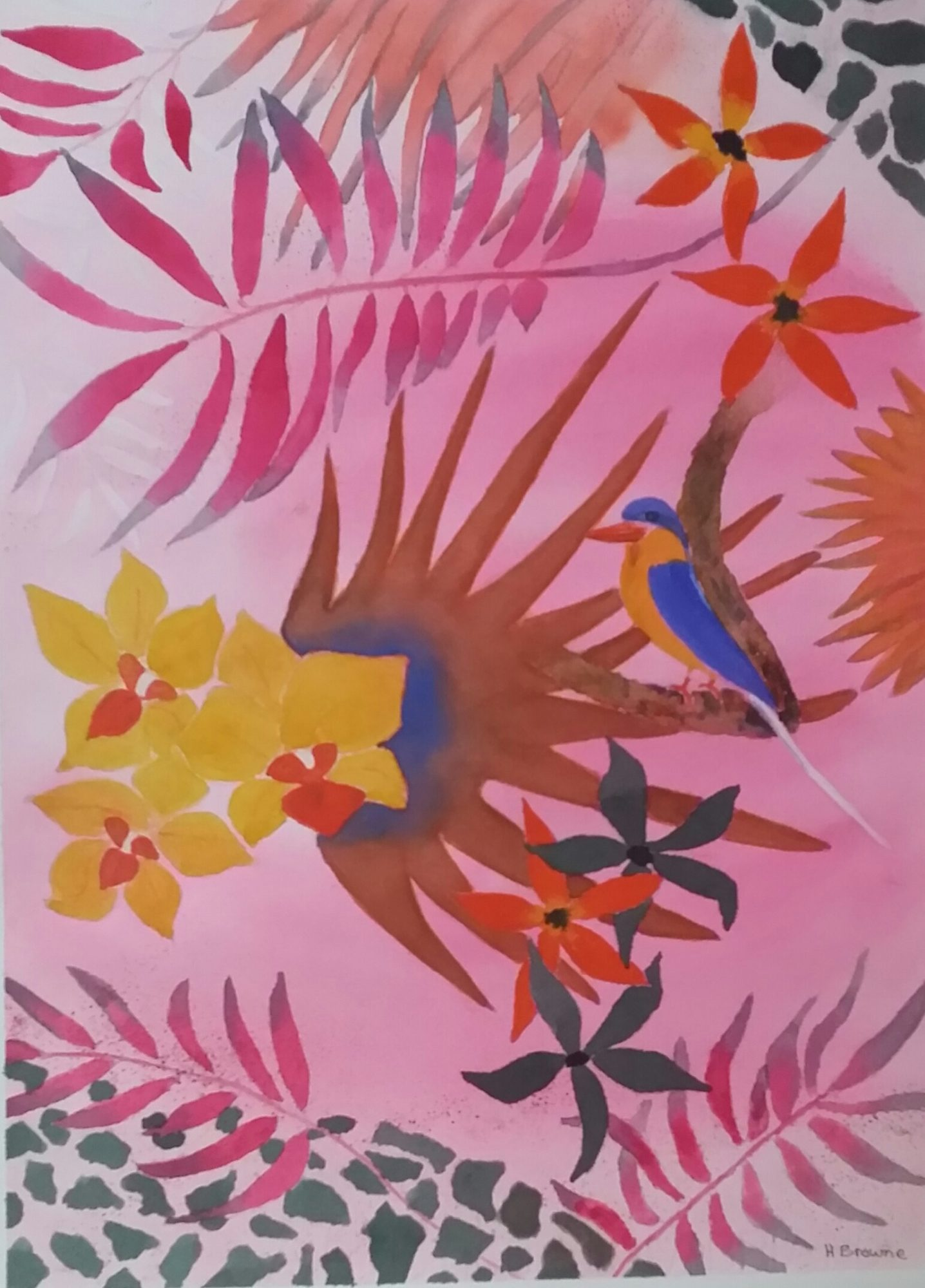 Paradise Kingfisher 38×28