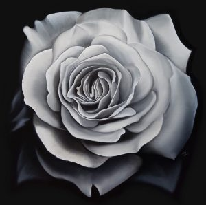 Monotone Rose Sm
