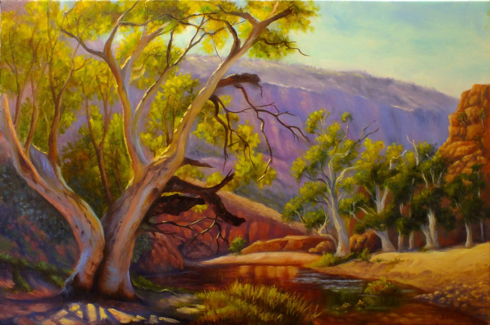 Ormiston Gorge By Chris Vidal