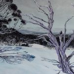 Snowdrift Mount Selwyn