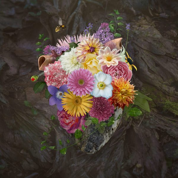 Flowering Heart Srgb