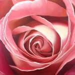 Heart of the Rose – Grace