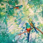 Ltd Ed Canvas Print Whispers – Mulga Parrots