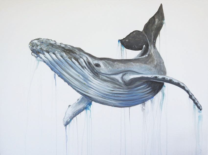 Drippy Whale Web