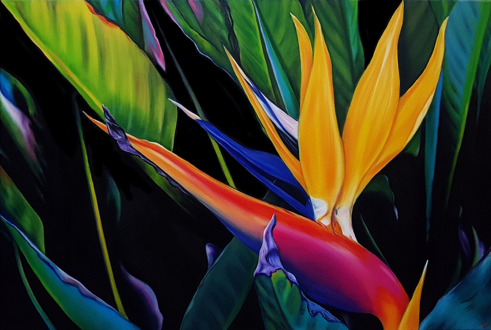 Bird Of Paradise Sm