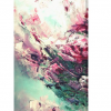 Floral Wall Art For Sale Petra Meikle De Vlas6
