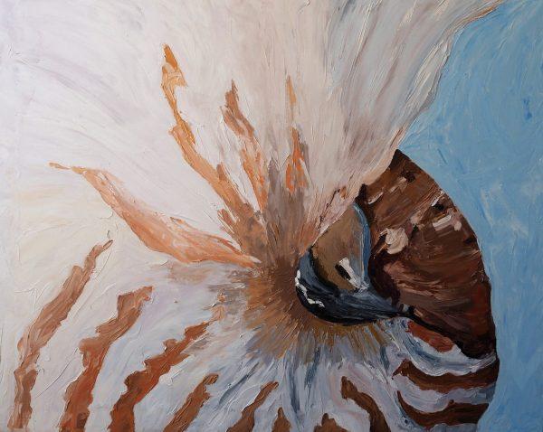 Nautilus Exposed Carmen Griffen Art Lovers