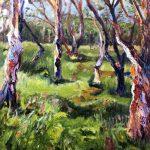 STRINGYBARK GUM TREES