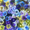 Aqueous Bloom Viii Detail