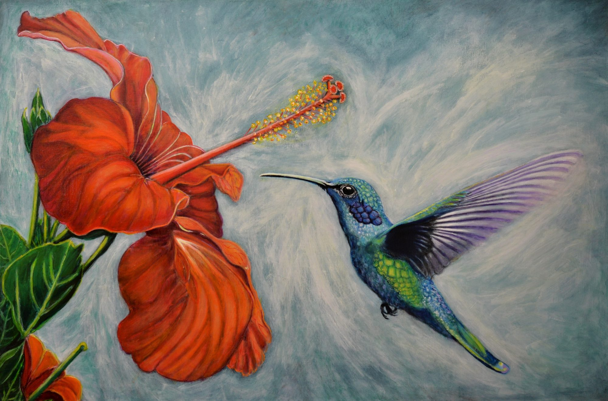Hummingbird H 62 X W 92 X 3.8