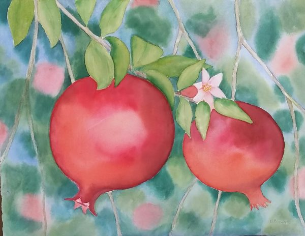 Two Pomegranates 49x38cm