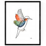 True Motion Kingfisher 2