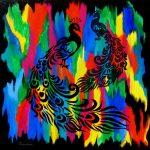 Peacocks – Noir et Gris