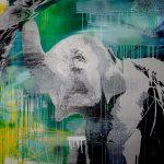 Nepalese elephant