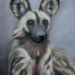 African Painted Dog Ltd Ed Print