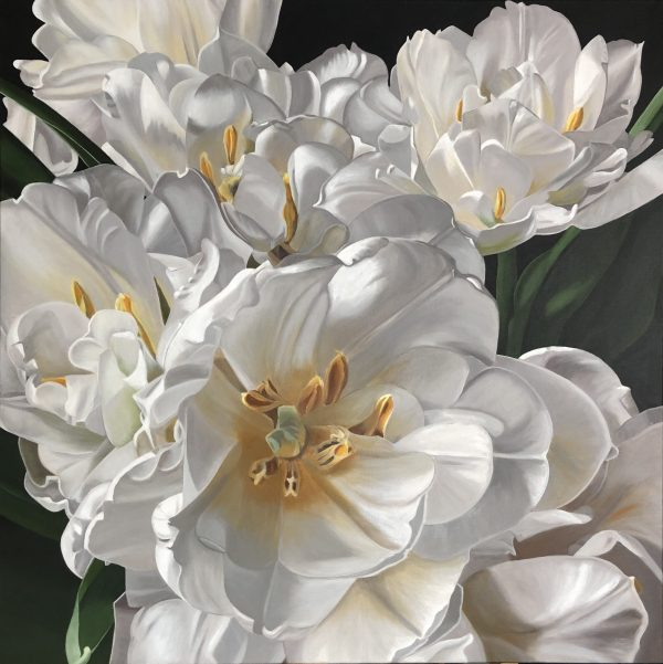 Double Tulips In White
