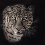 Maha Beautiful Eyes Leopard Ltd Ed Print