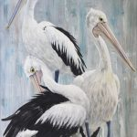 Pelicans – The Trio