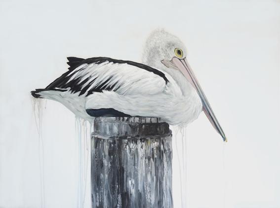 Woy Woy Pelican Fix 1 Web