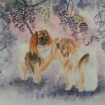 Two Tibetan Spaniel Dogs Playing Under Wisteria – Ltd Ed Print