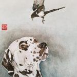 Dalmatian & Magpie