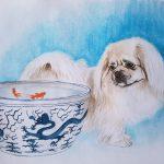 Tibetan Spaniel Dog and Blue China Gold Fish Pot – Ltd Ed Print