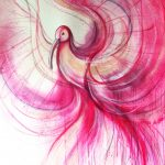 Pink Ibis