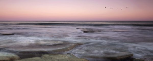 C Crimson Tide Caloundra