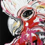 Abstract Galah
