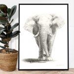 Etosha Elephant Ltd Ed Canvas Print