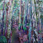 Rain Forest, Dorrigo National Park