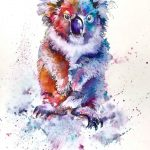 Colourful Koala