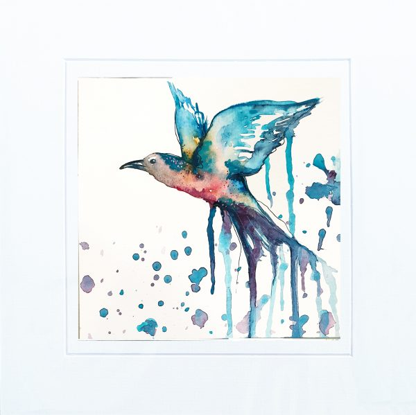 Leni Kae Red Belly Bluebird Watercolour Painting With Mount