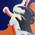 Pelicans Preening 2