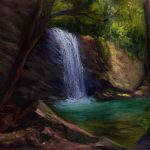 Buderim forest waterfalls Queensland