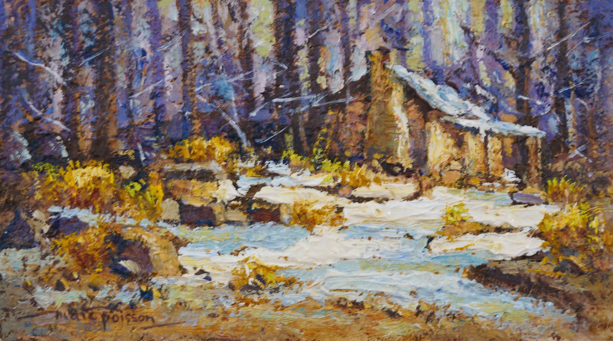 1106 12.7×22.8cm 105g Dogmans Hut Snowy Mtns Vic