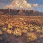 Purnululu National Park Kungkalahayi Lookout Western Australia