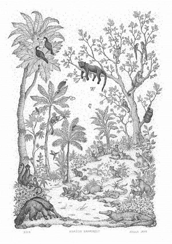 Amazonrainforest Scan