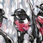 Pink Robins