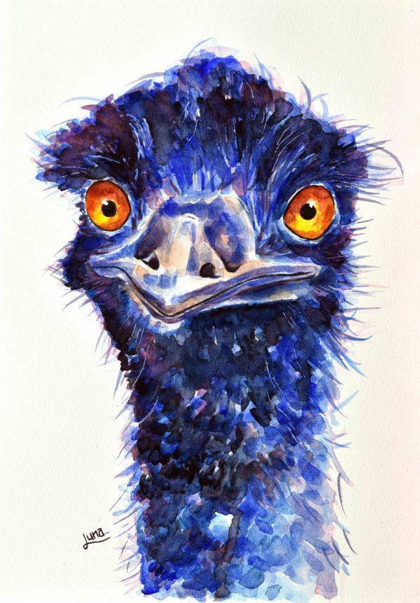 Emu Net